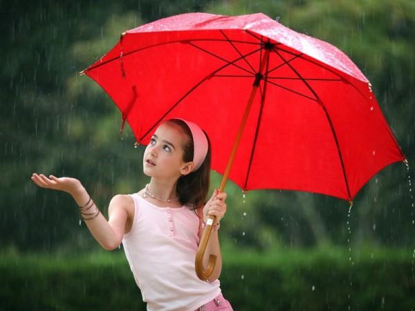 Как выбрать зонт по материалу, качеству, функциональности? Фото