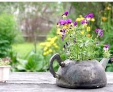 Модный сад со старыми вещами